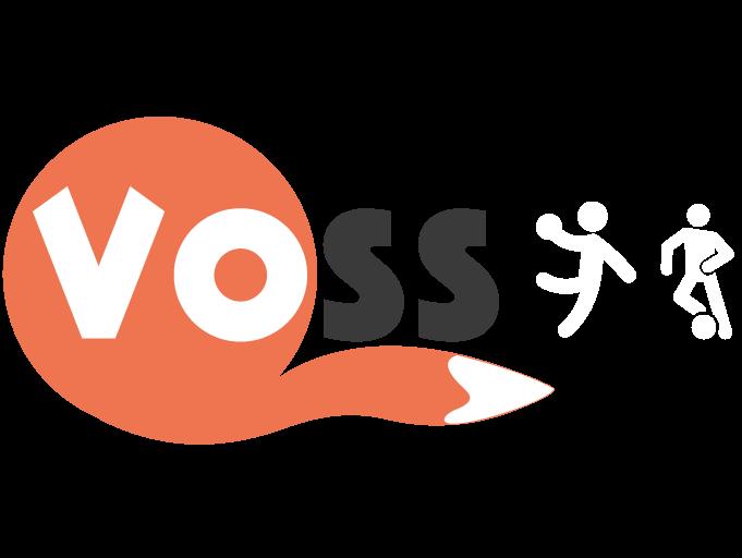 Kai Voss